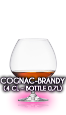 Cognac - Brandy (4 cl - Bottle 0,7l)